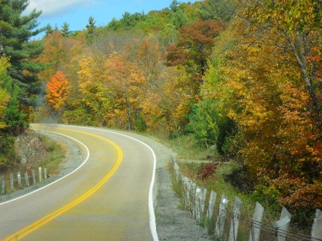 take a fall drive